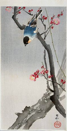"The Writing Process Blog Tour | Blog post by Eva Vanrell | Image: ""Bullfinch on Flowering Plum"" by Ohara Koson"