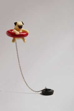 Clever White Elephant Gifts That Won't Break the Bank / Floating Pug Bath Plug Pug Love, White Elephant Gifts, Things To Buy, Cute Dogs, Clever, Cute Animals, Animals Dog, Crafty, Cool Stuff