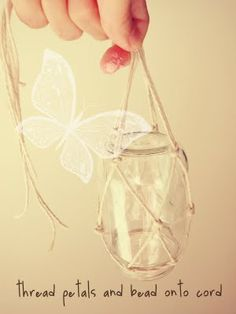 A butterfly feeder for all my fluttery friends. :3