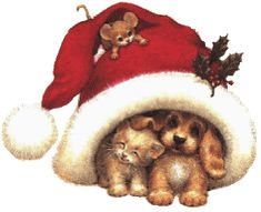 Chez Coxinelle - Les plus beaux gifs du net 5 Merry Christmas In Italian, Merry Christmas Images Free, Christmas Wishes, Christmas Pictures, Christmas Fun, Christmas Decorations, Christmas Scenes, Christmas Animals, Cute Kittens