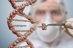 Scientist Is Replacing Part Of A DNA Molecule. Genetic Engineering And Gene Manipulation Concept Stock Image - Image of biotechnology, experiment: 89207213 News Health, Health Tips, Health Care, Dna Molecule, Human Dna, World Cancer Day, Gene Therapy, Does It Work, Genetics