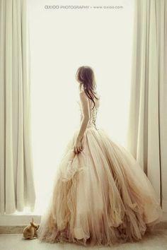 Proyecto Cenicienta: Mil capas de Tul... quiero un vestido de princesa!