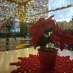 A little sparkle in your life....Have a very Merry Christmas!!!!!!#miaglikiaistoria  #palaiofaliro #sweetstories