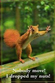 Trust me....I'm not touchin' those nuts!