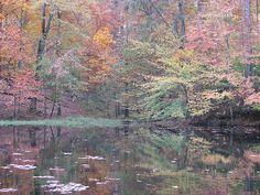 Autumn Retreat- Tennessee