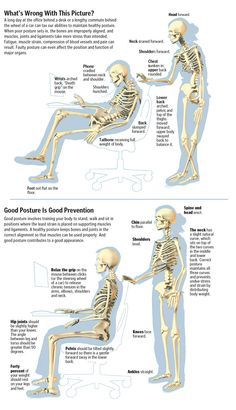 Bad & Good posture ✤ Raya Clinic- Chiropractic, Nutrition, Acupuncture, Spinal Decompression and Alexander Technique, Spinal Decompression, Postural, Spine Health, Chiropractic Wellness, Good Posture, Qigong, Massage Therapy, Physical Therapy
