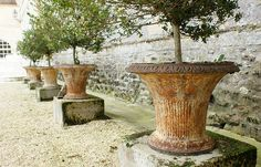 Antique iron planters with buxus...Chateau de Brecy
