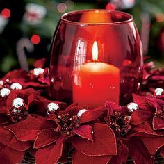 Just thought I would send alittle love and warmth your way,,,,,,,,,,,,,,From The Lady In Red!!