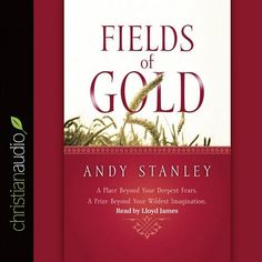 Fields of Gold by Andy Stanley CD