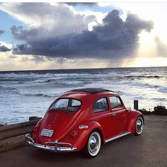 Rise. And shine. #zelectric #vintage_volks