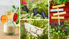 """""""Hanging Plant Tags"""" ---Ball regular jar lids (12), Valspar spray paint in Honeywood, Sprout, Red Queen and Dried Pepper, Pigtail sign holders (12)"""