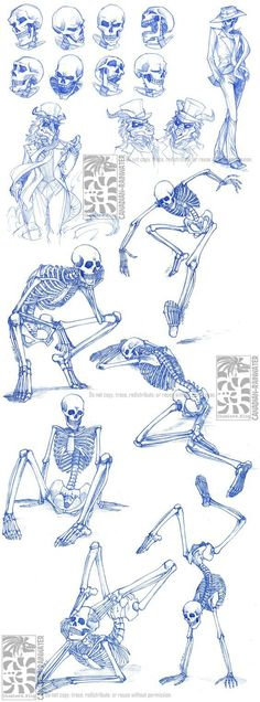 Skelleton drawing idea