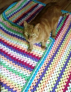 My first Etsy listing.  The blanket, not the cat.