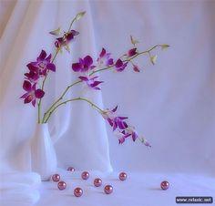 Цветочные натюрморты (80 фото) | Релаксик