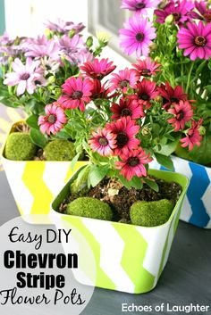 easy DIY chevron striped flower pots