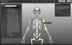 Where the heck was this while l was in college?!? A stunning 3D biology resource which allows you to look at human anatomy in fine detail. Zoom and move the body removing and adding layers of organs, muscles, nerves and other systems with the click of a button.