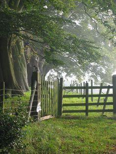 absilyum:    celtic-dreams:    gardenbliss:    inspirationlane:    grandmas-dreams:    (via tassels, indigodreams)