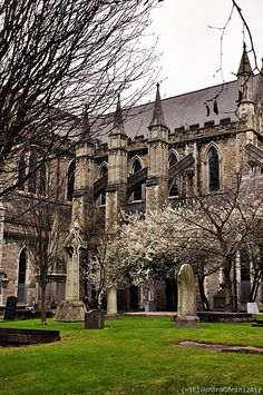 Gothic and Incoming Spring  /  St.Patrick Cathedral in Dublin