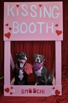 Who wouldn't want to pucker up for these sweet babies at a dog kissing booth?! This was such a fun Valentine's Event, we're totally doing it again!