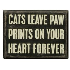 This is true my cat passed away recently and this quote made me miss her. She will always be in my heart.