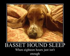 Sleep!!