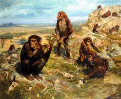 Australopithecus, an omnivorous primate from the late pliocene. It was a species of ape most related to humans in the way that it walked upright. They were social creatures living in clans for mutual protection as they were not at the top of the food chain at the time