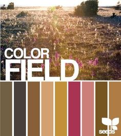 Color naturaleza: