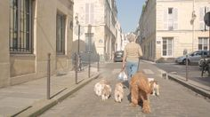 - Le Marais - by guerrinowski. A guy cruisin' Le Marais, in Paris, everyday.