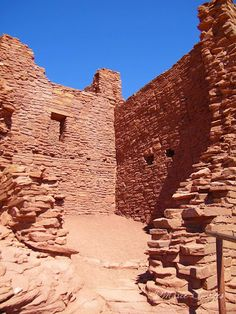 Hermit in ruins.... Wupatki National Monument - Arizona