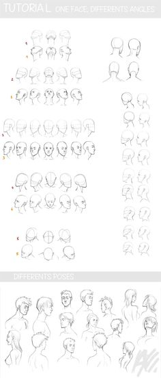 Anatomy Drawing Tutorial Resources for Writing, Drawing, and Other Stuff — drawingden: TUTO - face and perspective by. Drawing Reference Poses, Drawing Skills, Drawing Poses, Drawing Lessons, Drawing Techniques, Design Reference, Drawing Tips, Figure Drawing, Art Lessons