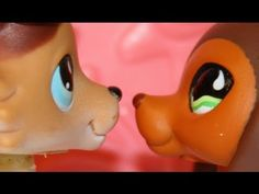 Littlest Pet Shop: Popular (Episode #6: Moments of Reflection)     Savvy and Sage 4 evez