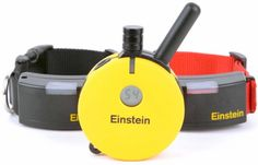 Einstein Two Dog 1/2 Mile Remote Training System Collar - http://www.thepuppy.org/einstein-two-dog-12-mile-remote-training-system-collar/