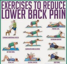 Exercise to reduce Lower back pain. fitness, workout, exercise, routine…