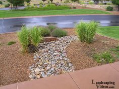 Small Desert Scene Landscape River Bed - The planting scheme is simple and a repetition of just a few varieties of plants. The fake dry desert river bed is also a great opportunity to use different contrasting textures.