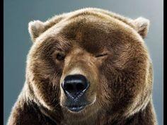 Прохождение игры 35ММ #1.Бродяга и медведь!!!
