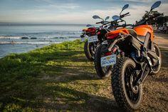 The 2015 Zero S, DS and FX (Photo: Andrew Wheeler/AutoMotoPhoto)
