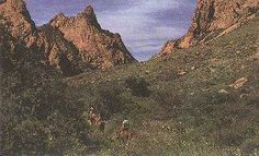 Big Bend National Park -- over 800,000 acres of spectacular scenery.  Everything's big in Texas!