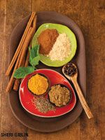 Kitchen Medicine  Bowls of cumin, turmeric, cinnamon, mint, black pepper, and dried ginger as well as bits of tree bark and leafy sprigs a...
