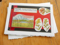 Paintedcups  handmade sewn card by bluestemhandmade on Etsy, $5.00