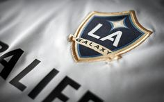 The LA Galaxy clinched the MLS playoffs on Sunday evening with a tie game against the San Jose Earthquakes. Read more....