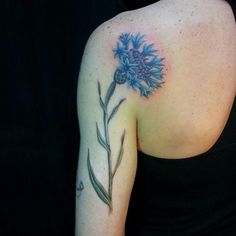 Just an example of a cornflower tattoo I found, wouldn't need to look anything like this