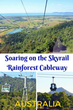 """Dubbed as """"The world's most beautiful rainforest experience"""". Glide over the rainforest canopy, rivers and waterfalls on the Skyrail Rainforest Cableway near Cairns, Australia. Tropical North Queensland with kids."""