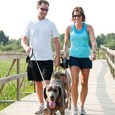 Dogs improve Human health.