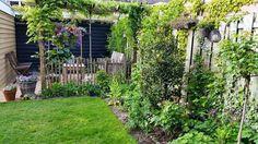 Gezellige tuin