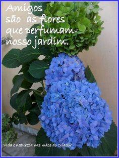 Há que regar nosso jardim, para que as suas flores não sequem.!...