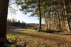 9958 Serendipity Road - Powell River Real Estate, Don McLeod – Your Hometown Real Estate Professional Powell River's Top Realtor Powell River, Sunshine Coast, Vancouver Island, Serendipity, Great Places, South America, Kayaking, Acre, Country Roads