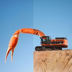 crab leg + excavator I could've hung around and watched this thing move dirt for…