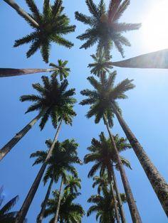 1,00€ · forestal silvestre-podas y talas ,arboles · limpieza de parcelas en CÀNOVES,BARCELONA tala y poda de árboles en  CÀNOVES,BARCELONA tala y poda de árboles en  CÀNOVES,BARCELONA desbroces forestales en  CÀNOVES,BARCELONA franjas de protección en  CÀNOVES,BARCELONA limpieza de parcelas en  CÀNOVES,BARCELONA  zonas verdes en  CÀNOVES,BARCELONA trabajos forestales en  CÀNOVES,BARCELONA jardinería en  CÀNOVES,BARCELONA servicios forestales en  CÀNOVES,BARCELONA desbroce de jardín en…