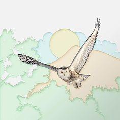 Snowy Owl. . . #honestwork #infographic #meanincfographic #illustration #negativespace #minimalism #minimal #animal #owl #art #paper #papercraft #concept #combination #style #exploration #experiment #shadow #papercut #light #whitespace #fly #bird #wild #wildlife #snowyowl #artdirection #photooftheday #instanature #white