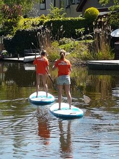 Stand Up Paddle Surf in Zoetermeer The Netherlands 2018 Stand Up, Paddle, Netherlands, Surfing, Sports, Pictures, The Nederlands, Hs Sports, Photos